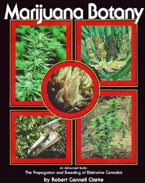 Image for Marijuana Botany :  An Advanced Study, the Propagation and Breeding of Distinctive Cannabis